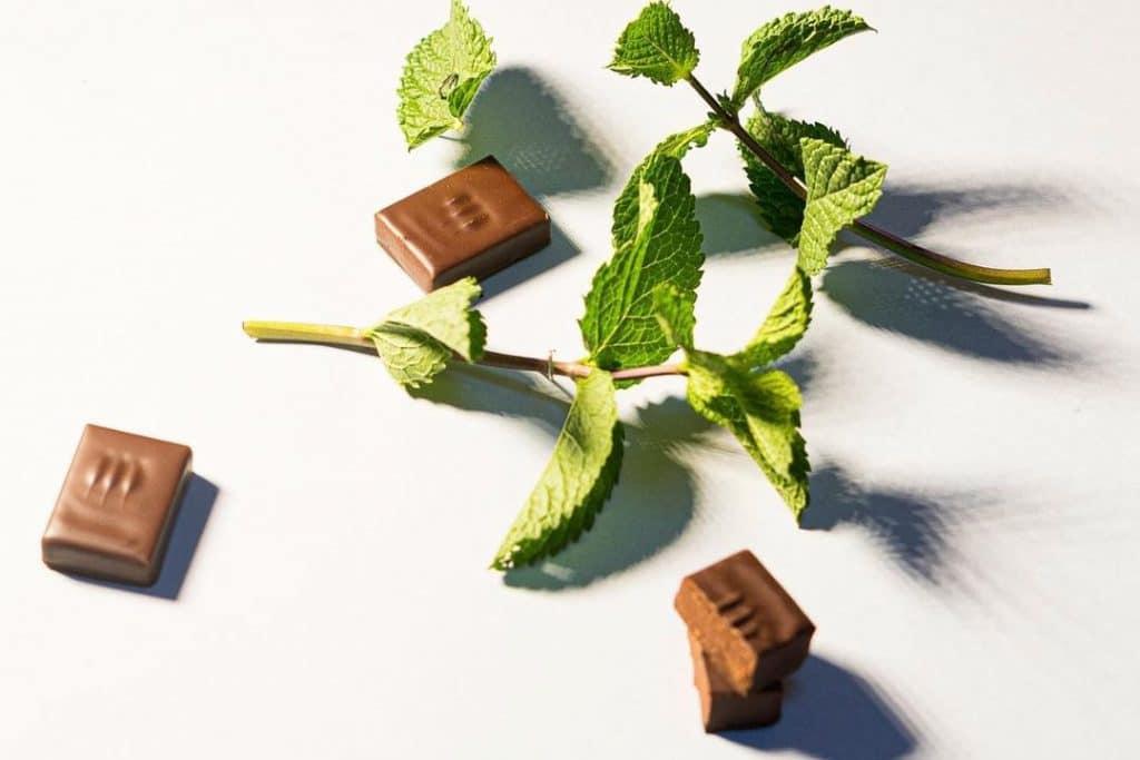 chocolat Damyel