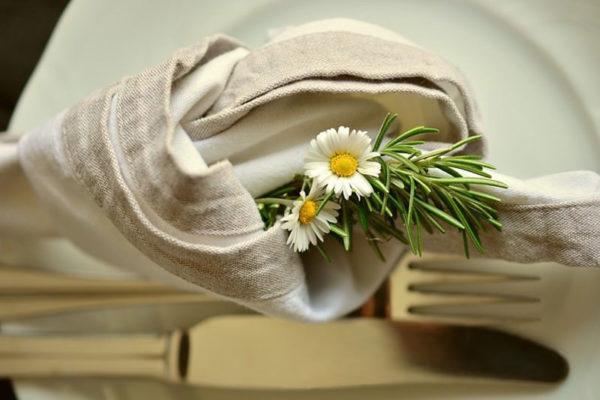 Graines de papilles, média et conseil en gastronomie végétale